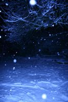 Snow Stock 100 by Malleni-Stock