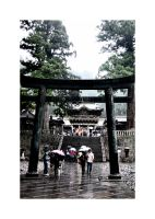 rainy nikko III by choney25