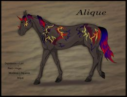 CH Alique -SOLD- by Everland-Stables