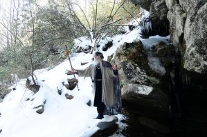 Wizard of Ice 2014-14-02 23 by skydancer-stock