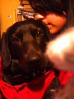 My doggy and me by Krishtal