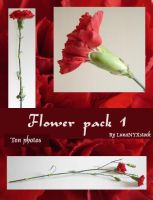 Flower pack 1 by LunaNYXstock