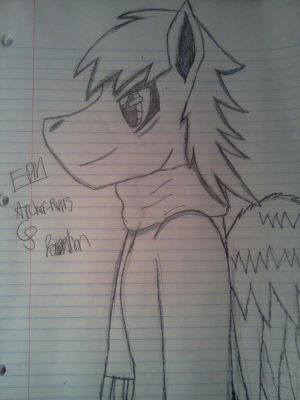 The pony from my dream