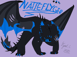 part 1. httyd ref. sheet by Nicky-the-dragoness