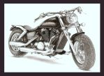 Harley Davidson by Rainboray