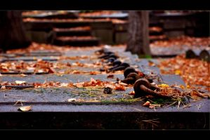 Many graves by tomsumartin
