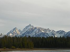 Grand Tetons by Synaptica