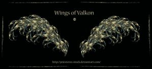Wings Of Valkon by priesteres-stock