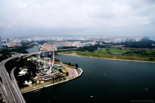Singapore Flyer by l32