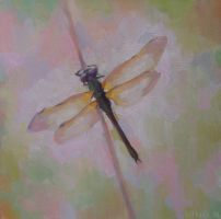 Dragonfly by Soirsce