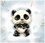 Bamboo by capsicum