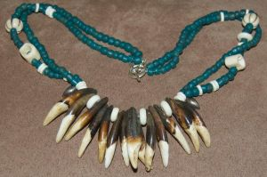 Fossilized Wolf Tooth Necklace by Phoenix-Cry