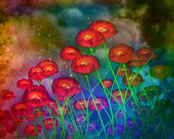 Love Poppies by rabbitica