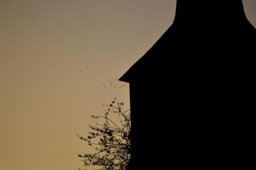 Church Silhouette With Distance Birds by JoeDHalford