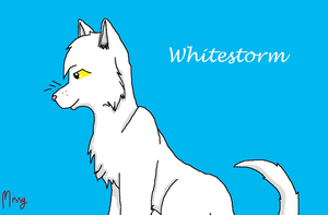 Whitestorm by RiverBelle