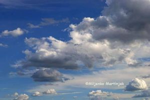 Sky and Clouds 14 by skylight11