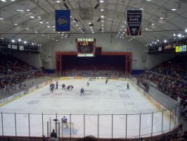 Syracuse Crunch by morphinetears36