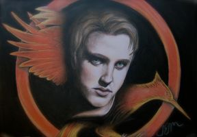 Finnick Odair in The Hunger Games - Catching Fire by ShannonEM