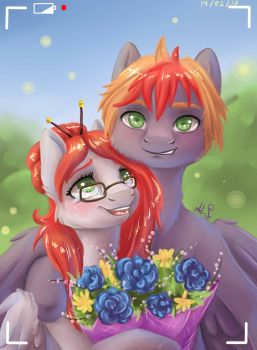 a bouquet of flowers as a gift by Alina-Sherl