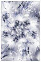 _ Winter Flower _ by Alis86
