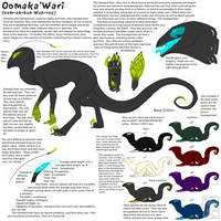 Oomaka'Wari Species Ref by RAIDEO-MARS