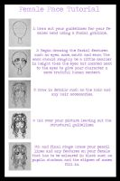 Female Face Tutorial by CaihongHoshi