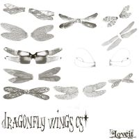Dragonfly wings cs2 by BrushHaven1