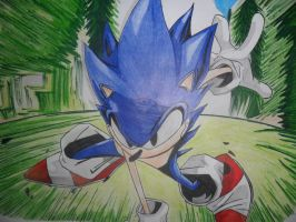 Sonic The Hedghog by helder11