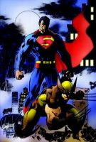 superman - wolverine by anonymous1310