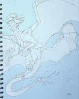 Doublewing Drawing by Leundra