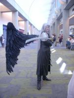 Fanime '09 Sephiroth by Unicornmon