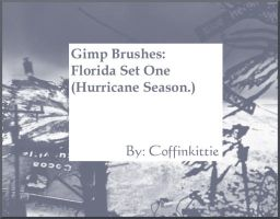 Gimp Brushes: FL- Hurricanes by coffinkittie