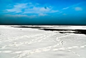 Great Blue Salt Lake by clinekurt78