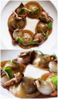 Ravioli Bourguignonne by kingofkings16