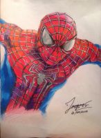 The amazing spider man 2 by tontentotza