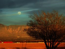 Day Moon by SharPhotography