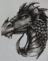 Charcoal Dragon by BaroqueBeat
