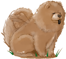 Chow Chow by Oeus