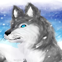 [Redraw] - Wolf in the Snow by mansa1212