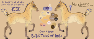 4536 BuD's Tears of Light -foal design by GuardianOfJay