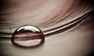 Drop on a Leaf by Tb--Photography