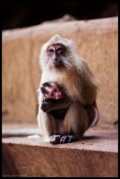 Mother's Care by hesitation