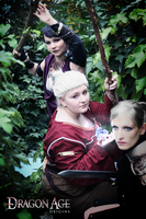 Dragon Age: Origins - On our way IV by LadyTenebraeTabris