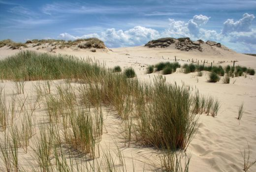 Dunes in Slowinski National Park by jufik