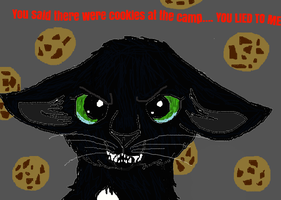 DON'T LIE TO RAVENPAW ABOUT COOKIES! by kimbafan