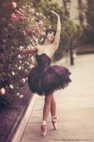 Ballet in London by philippemaurice