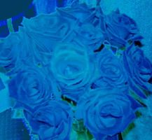 Blue roses by whispers2myheart