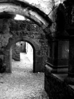 Ross Errily Friary 2 by Cicker