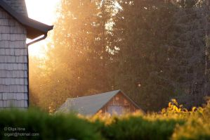 sunset on the stable by Olga5