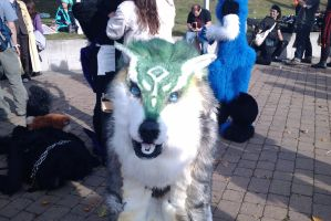:MCM Oct 11: Hello, Wolf Link by TheLupineOne